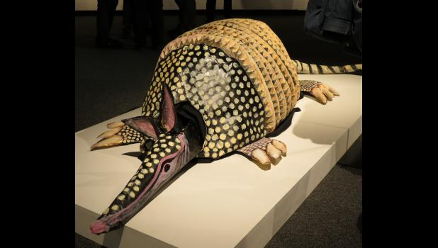 "Surreal? Perhaps. Suppose that would be in the eye of the beholder. An armadillo created by artist Lisa Barnes can be seen at the ""Women's Voices"" art exhibit which is on display at the University Museum on the campus of Southern Illinois University Carbondale."
