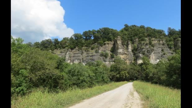As often happens, a photo, especially in black and white, doesn't really do justice to the beauty of the bluffs at LaRue-Pine Hills. Snake Road is at the base of the bluffs.