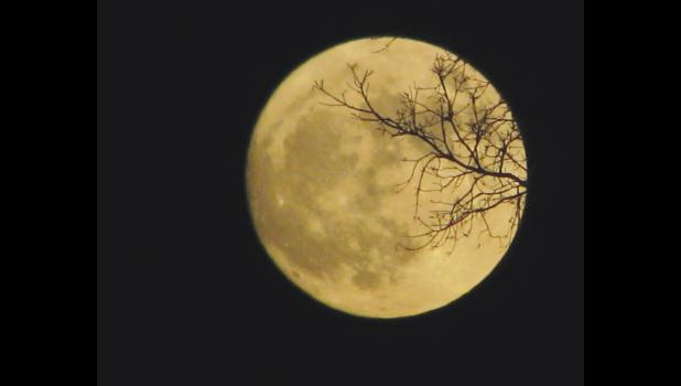 These images of the November supermoon were captured Sunday night in the nighttime sky over Union County.