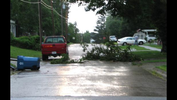 A tree limb was seen on South Street in Anna Saturday evening.